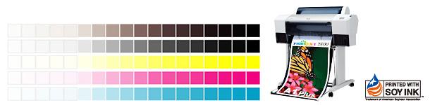 DM 印刷物の色目を色校正でご確認下さい。